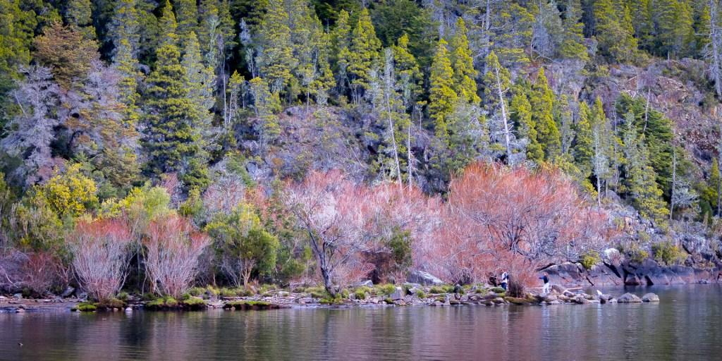 La playita Lago puelo en invierno