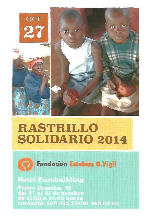 rastrillo-solidario-fundacion-esteban-g.vigil