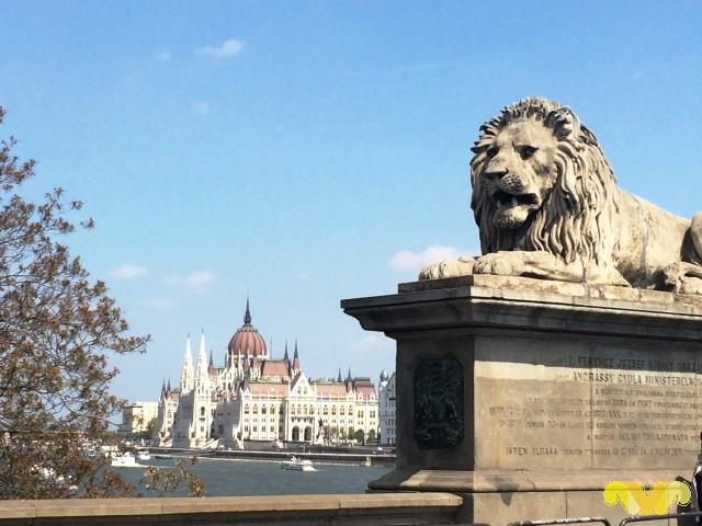 Vivir como Reyes en Budapest. Puente de las Cadenas
