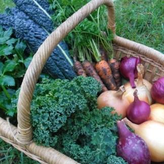 Books - Gardening & Veg Growing