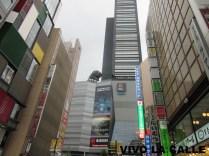 Cinema Toho, con Godzilla asomándose.