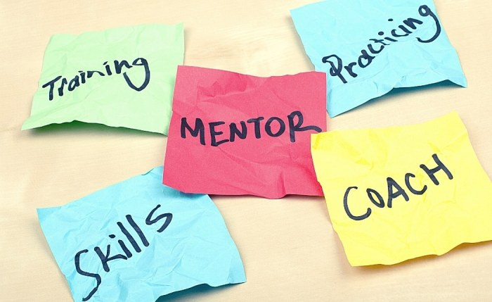 mentoring goals for success