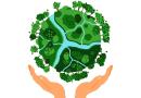 Primeiros passos para ajudar o meio ambiente