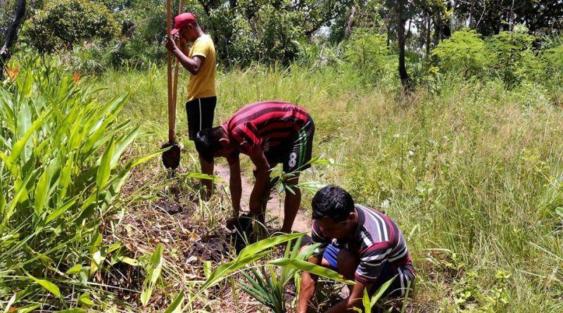 Orgão ambiental participa de conservação de nascentes em aldeia Xerente