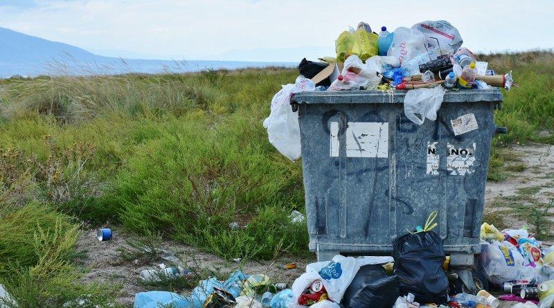 Dia Internacional Sem Sacos de Plástico: um dia para refletir sobre os nossos hábitos