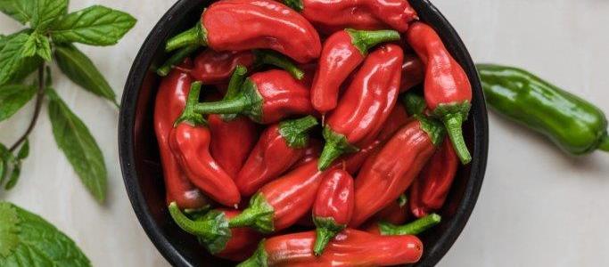Čili – male ljute papričice