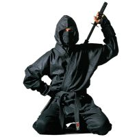 SEO for Law Firms Ninja