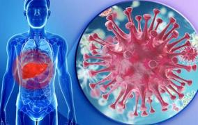 Người bị viêm gan B, viêm gan C cần làm gì để phòng ngừa COVID-19 ?
