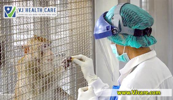thai lan thu nghiem thanh cong vaccine covid-19 tren khi va chuot TDYK  Thái Lan thử thành công vaccine COVID-19 trên khỉ, chuột thai lan thu nghiem thanh cong vaccine covid 19 tren khi va chuot VJcare