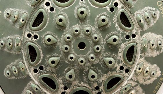 [object object] 9 vật dụng siêu bẩn cần làm sạch hàng ngày, nhưng chúng ta lại thường bỏ qua voi hoa sen vi khuan