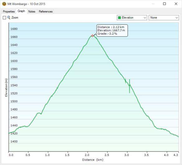 Mt Wombargo profile