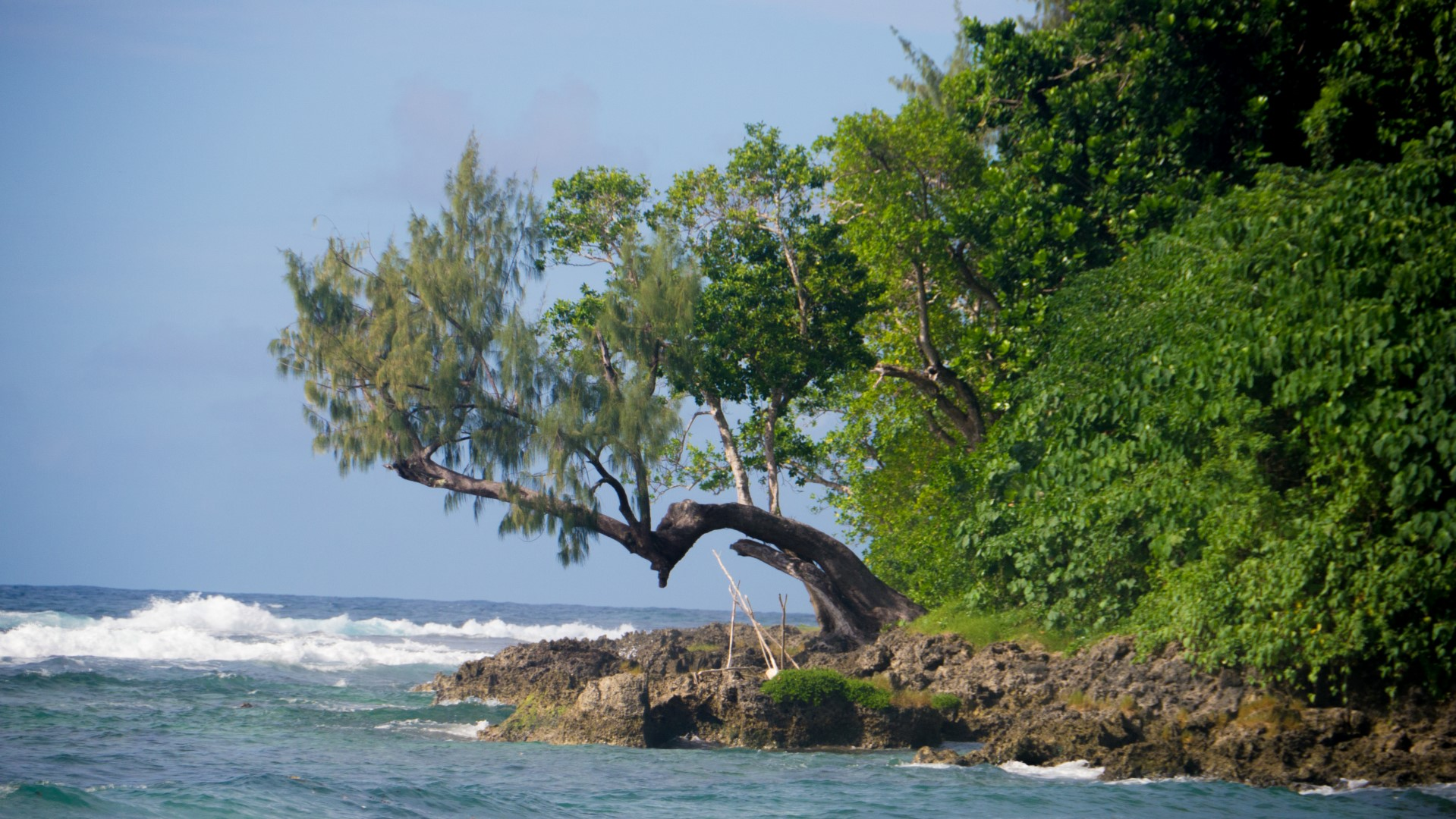 VK, South Pacific & Indian Ocean Expeditions