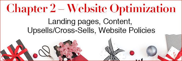 Holiday Marketing Tips website optimization chapter image