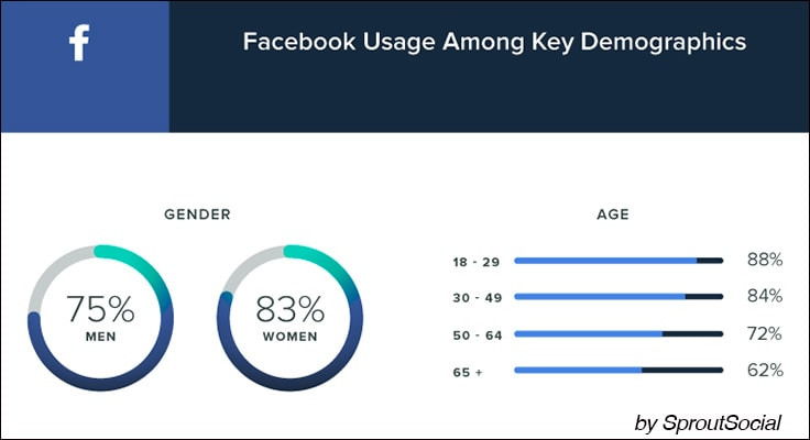 image about facebook demographics