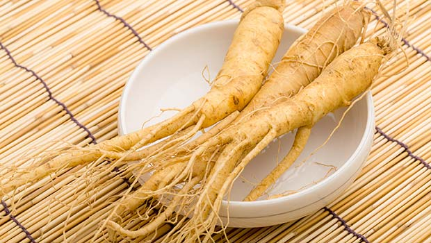 home remedies to increase sperm coun-panax ginseng