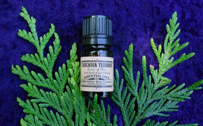 how to treat hpv - thuja oil