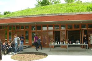 muzej vucedol 1