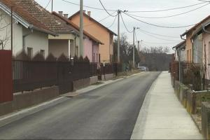 ulice i drvo vu