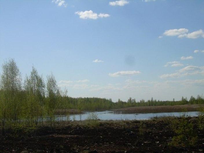 болота, Оболь
