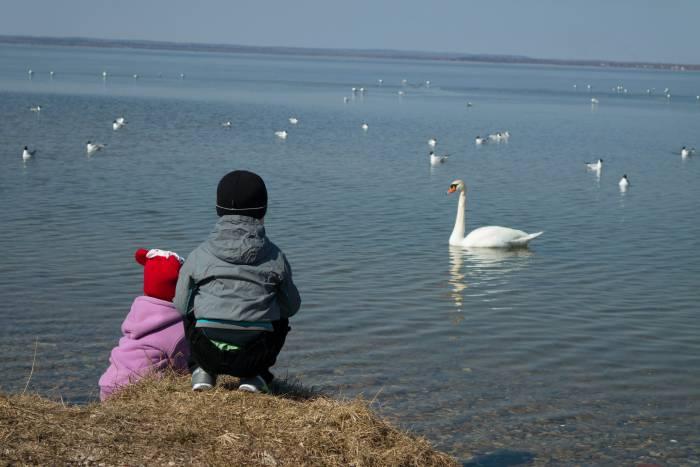 ... наслаждаться природой вместе. Фото Анастасии Вереск
