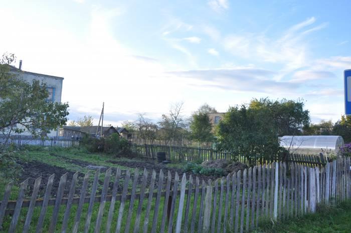Забор в деревне нынче - роскошь. Фото Анастасии Вереск