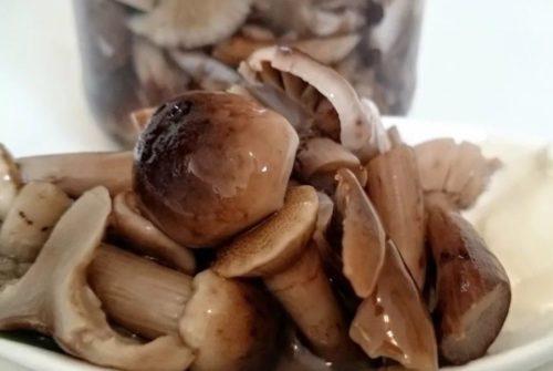 Маринованные опята с корицей и горчичными зернами