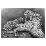 Growling Jaguars Pencil Drawing By Vlad Art