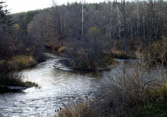 river in mi3