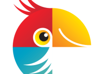 Movavi Photo Editor 5.8.0 Crack With Keygen Free Download 2019