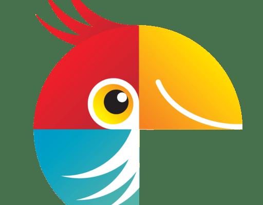 Movavi Photo Editor 6.6.0 Crack + Serial Key Free Portable 2020