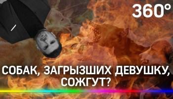 mest-za-rasterzannuyu-devushku-v-buryatii-szhigayut-bezdomnyh-sobak-2