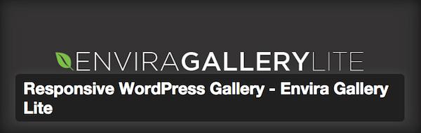Free-Envira-gallery