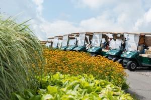 VMCE Golf (9) resize