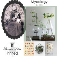 Guest-Pinner: If Beatrix Potter Pinned