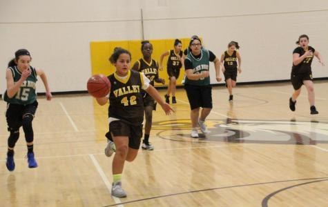 First-year basketball players have enjoyable season