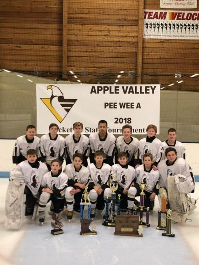 Picture+from+Apple+Valley+Youth+Hockey+website