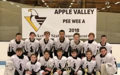 Apple Valley Peewee A hockey team takes sixth place in state tournament