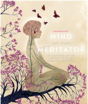Mind of a meditator