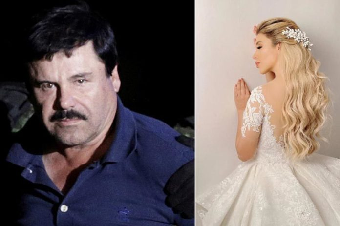 Miss wife of the world's most dangerous drug tycoon is trapped