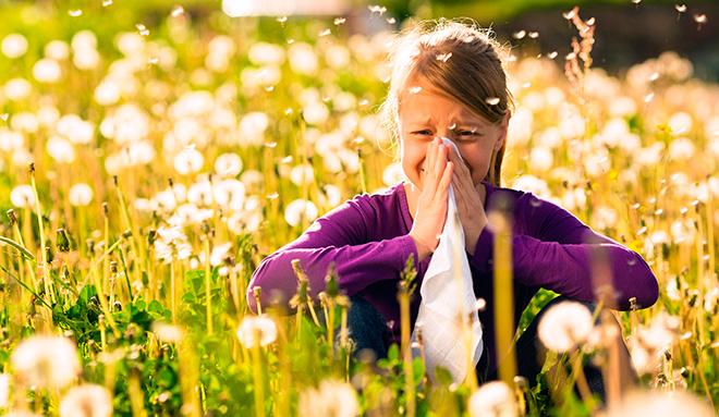аллергический насморк на пыльцу цветов