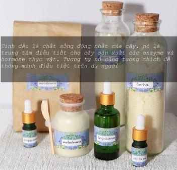 organic cosmetics in vietnam