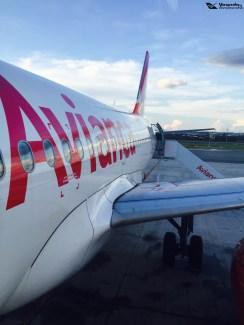 Avianca Nova_fuselagem