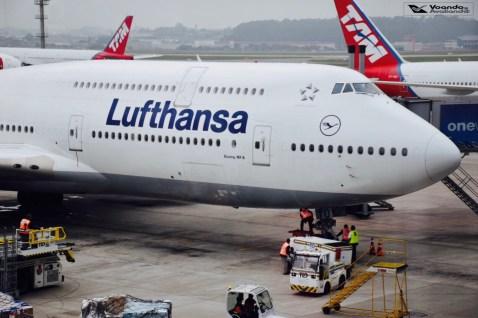 B787-8 - Lufthansa - GRU