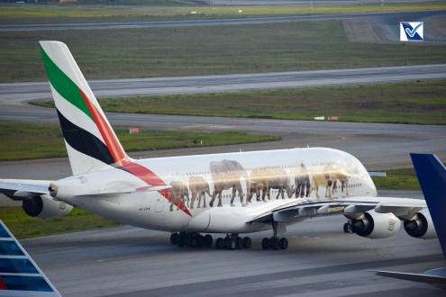 Airbus_A380_GRU (25)