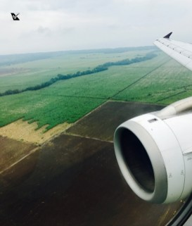 Avianca - JFK_SAL_LIM (37)