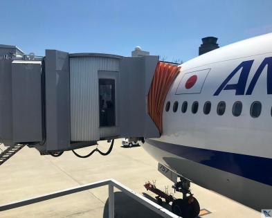 ANA - B777 - Estacionado Osaka (1)
