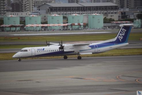 Osaka - Ana Wings - Dash 8