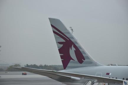 Qatar - Cauda - B787