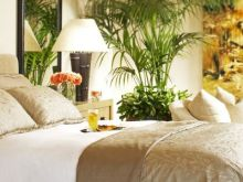 Classic Tropical Bedroom Ideas