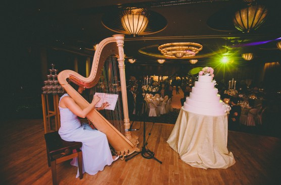 Harp _ Credit Samuel Goh photography